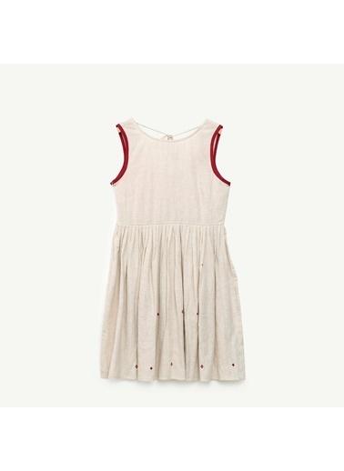 Yargıcı Bağlama Detaylı Elbise Renksiz